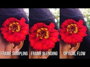 Optical Flow vs Frame Blending vs Frame Sampling (VIDEO COMPARISON) (Premiere Pro CC 2017)