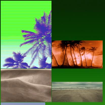 "Tropical / Desert ""companion"""