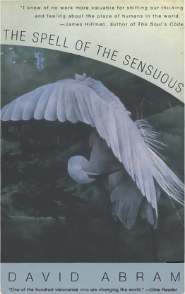 the-spell-of-the-sensuous-.pdf