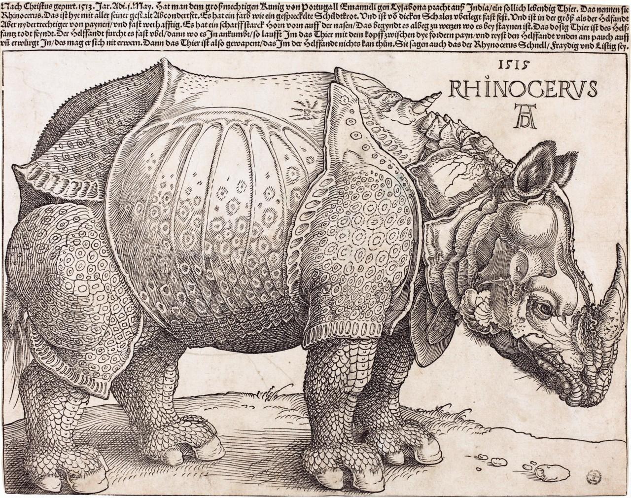 Albrecht Dürer, Dürer's Rhinoceros (1515)