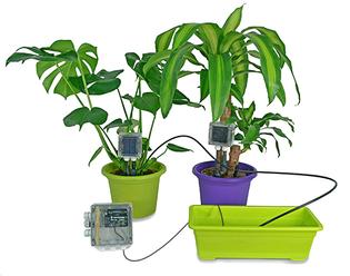 smart objects / wifi nature