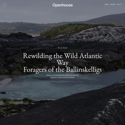 Rewilding the Wild Atlantic Way - Openhouse Magazine