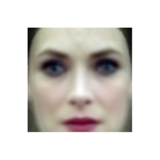 """""""Winona"""" Eigenface (Colorized), Labelled Faces in the Wild Dataset 2016"""