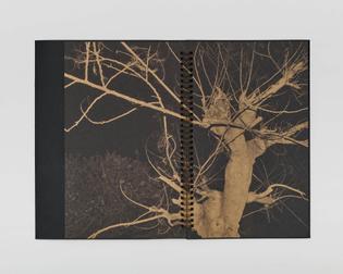 2020-01-30-aftb-book-documentation0993.jpg