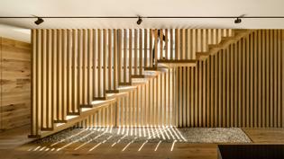 Penthouse Cortes by ASP Arquitectura Sergio Portillo, Mexico City, Mexico