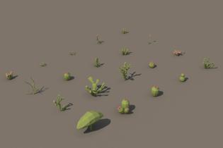 free-desert-plant-3d-low-poly-models3.jpg