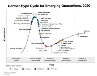 Gartner quarantine hype cycle