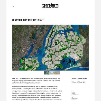 New York City (Steady) State — Terreform