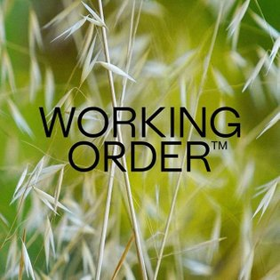 Wordmark for Working Order, from a couple years back. Collagen protein for bodies in a permanent state of change 🍃 @working....