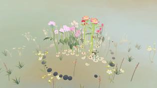 Charlotte Madelon, Rosa's Garden