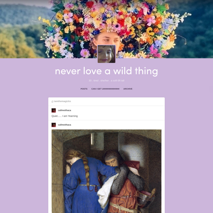 never love a wild thing