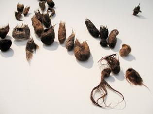 Andrea Cote 'Hair.Doings' 2006
