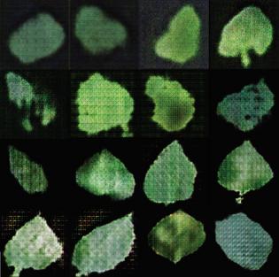 Faux Foliage by Aarati Akkapeddi