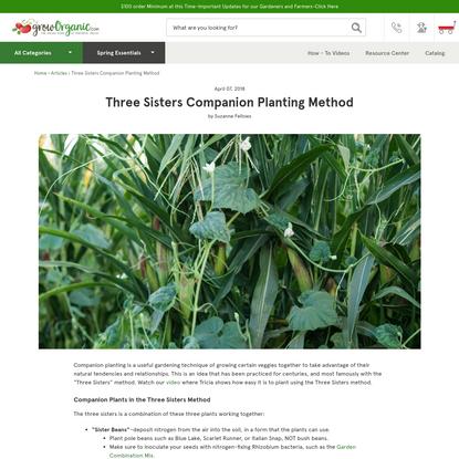 Three Sisters Companion Planting Method