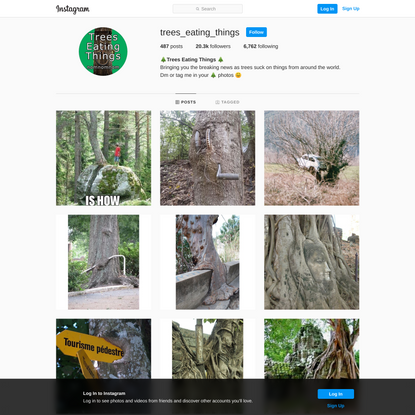 🌲Trees Eating Things 🌲 (@trees_eating_things) • Instagram photos and videos
