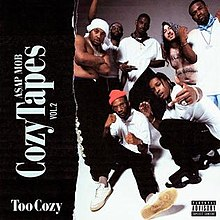 220px-cozy_tapes_too_cozy_cover_art.jpg