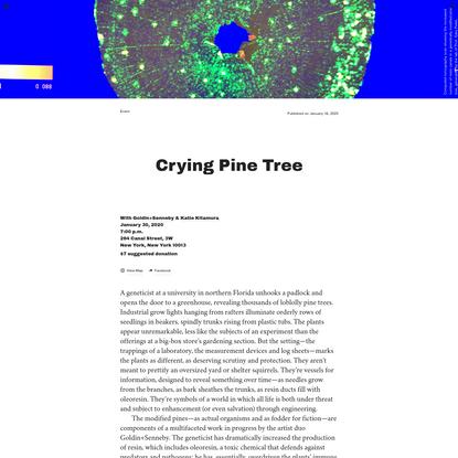 Triple Canopy - Crying Pine Tree by Goldin+Senneby & Katie Kitamura