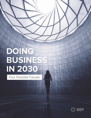 bsr_report_doing_business_in_2030.pdf