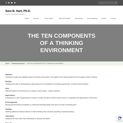 THE TEN COMPONENTS OF A THINKING ENVIRONMENT