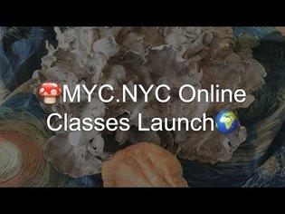 🍄MYC.NYC Online Classes Launch 🌍