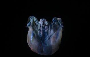 EAGER by Allison Schulnik