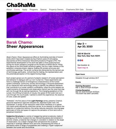 Barak Chamo: Sheer Appearances - Sheer Appearances | Chashama