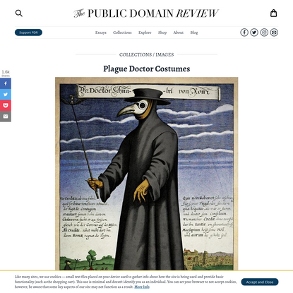 Plague Doctor Costumes