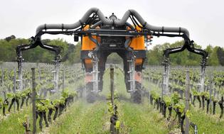 Robo Gardening