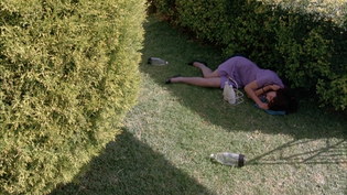 Campion, Jane - Sweetie (1989) 1