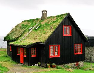 Foliage covered green roof in Kirkjubøur, a photo from Faroe Islands.