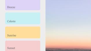 huma_color_palette.jpg