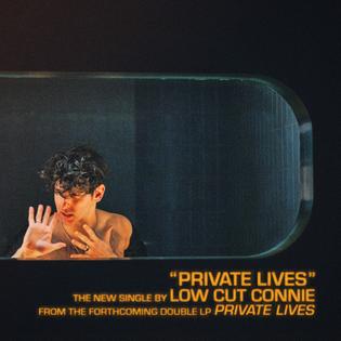 privatelives_singleart.jpg