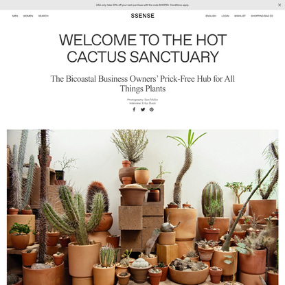 Welcome to the Hot Cactus Sanctuary