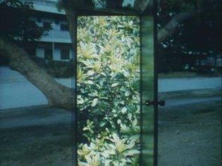THE MOON-TAKASHI ITO,1994