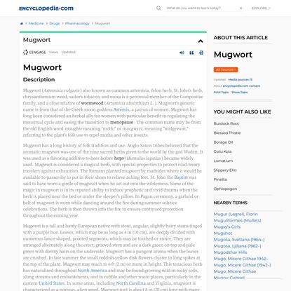 Mugwort | Encyclopedia.com