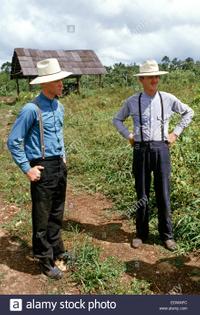 orthodox-mennonite-men-working-on-the-land-in-barton-creek-belize-edwafc.jpg