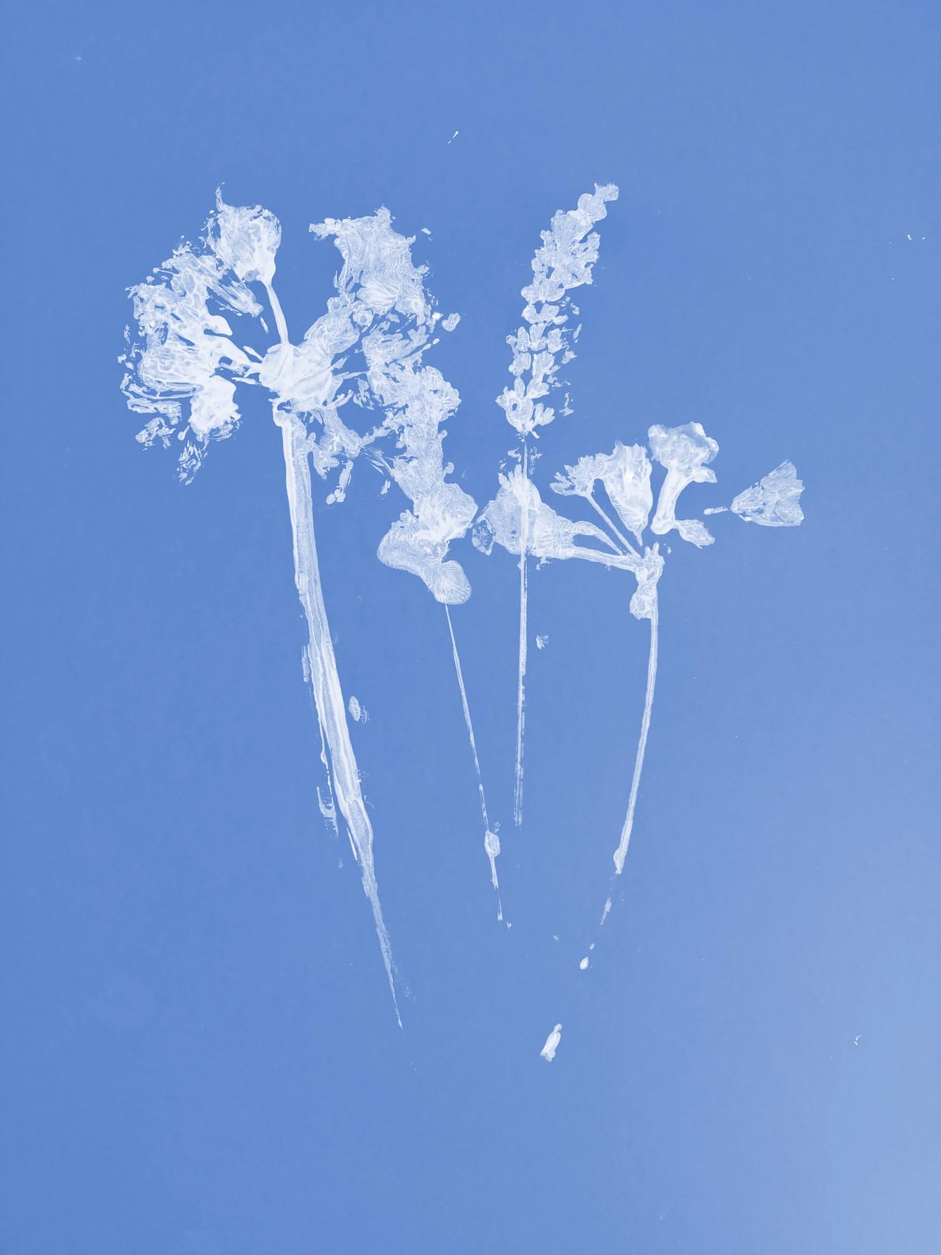 new-flower.jpg