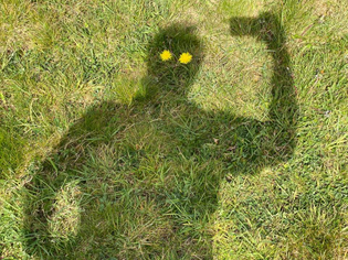 flower_eyes.jpg
