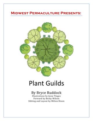 plant-guilds-ebooklet-midwest-permaculture.pdf
