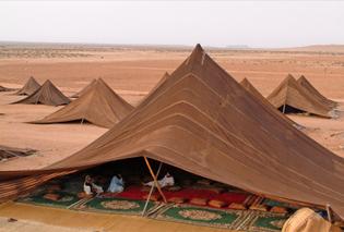 desert tent rug