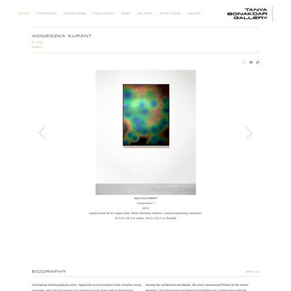 Agnieszka Kurant - Artists - Tanya Bonakdar Gallery