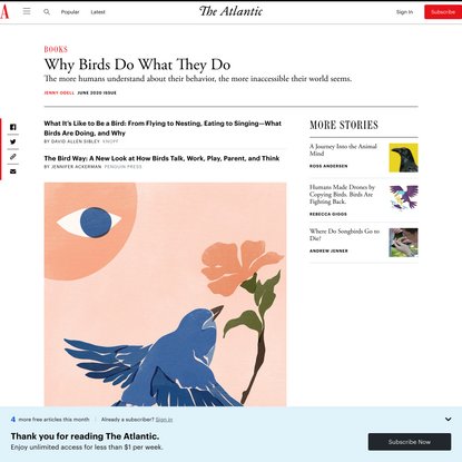 Why Birds Do What They Do