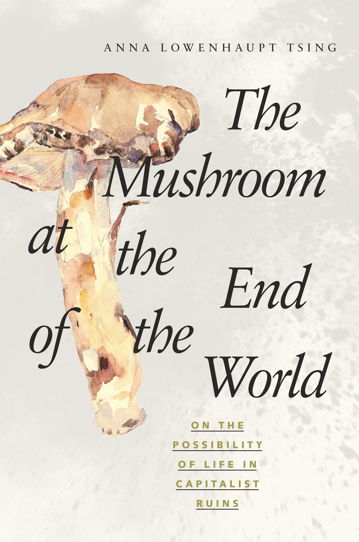 The Mushroom at the End of the World / Anna Tsing