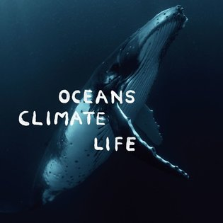 Stop Plastic Pollution - Florian Schneider(Kraftwerk co-founder), Dan Lacksman (Telex) by Dazed Digital