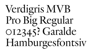 MVB Fonts – Verdigris Pro Big