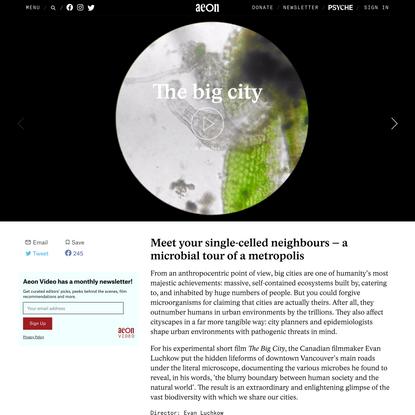 Meet your single-celled neighbours – a microbial tour of a metropolis   Aeon Videos