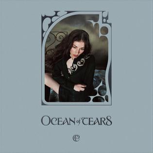timothy-luke-caroline-polachek-ocean-of-tears-graphic-design-66407606_412548012693894_2387240921139812852_n.jpg