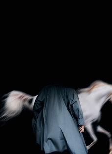 marta-blue-horse.jpg