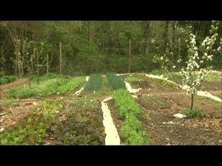 NC Now | Urban Farm Co-op | UNC-TV