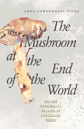 the-mushroom-at-the-end-of-the-world.pdf
